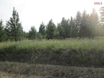 Priest River Residential Lots & Land For Sale: Lot 6 Douglas Clan