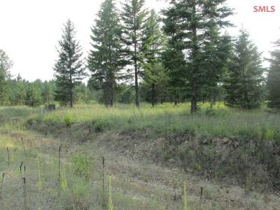 Priest River Residential Lots & Land For Sale: Lot 7 Douglas Clan