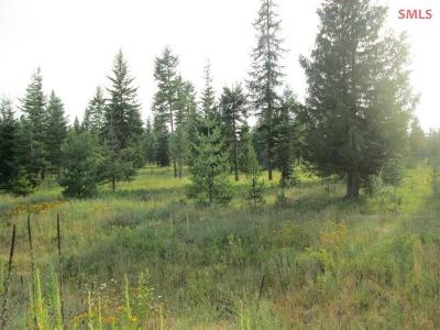 Priest River Residential Lots & Land For Sale: Lot 8 Douglas Clan
