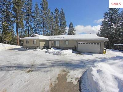 Priest River Single Family Home For Sale: 234 Diane Lane