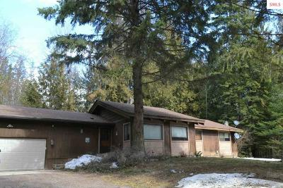 Sandpoint Single Family Home For Sale: 550 Oden Bay Dr.