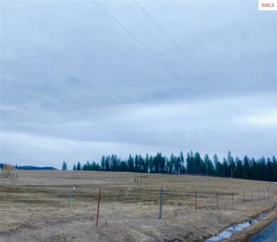Hayden Residential Lots & Land Contingent W/Bump Clause: Nka Dodd Road