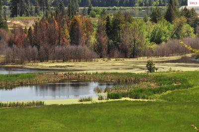 Bonner County, Pend Oreille County Residential Lots & Land For Sale: 27 Eastside Rd.