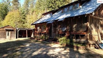 Careywood Single Family Home For Sale: 1055 E Kreiger Creek Road