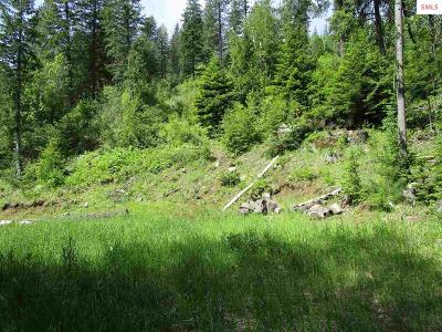 Sandpoint ID Residential Lots & Land For Sale: $59,900