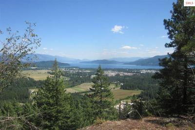 Sandpoint Residential Lots & Land For Sale: Lot 1g Summit