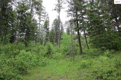 Bonner County Residential Lots & Land For Sale: Lot 8 O'neill Mountain