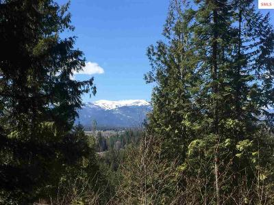 Sandpoint ID Residential Lots & Land For Sale: $195,000