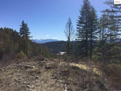 Sandpoint ID Residential Lots & Land For Sale: $250,000
