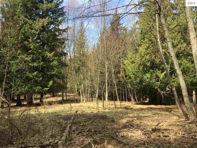 Sandpoint ID Residential Lots & Land For Sale: $100,000