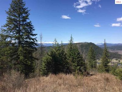 Sandpoint Residential Lots & Land For Sale: Naa/E12 Northstar Ln