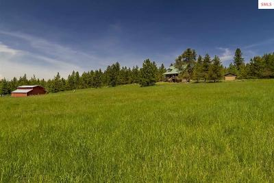 Priest River Single Family Home For Sale: 609 Peninsula Loop