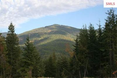Sandpoint Residential Lots & Land For Sale: Lot 3 Rising Hawk Ridge