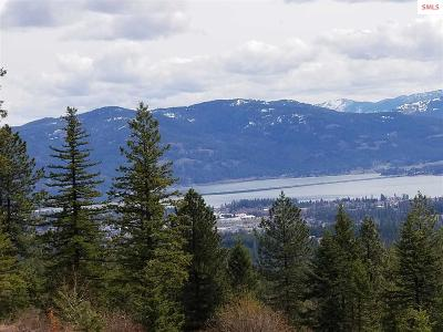 Sandpoint Residential Lots & Land For Sale: 271 Destiny Ln