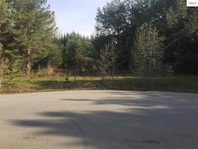 Sandpoint Residential Lots & Land For Sale: Missing Pony