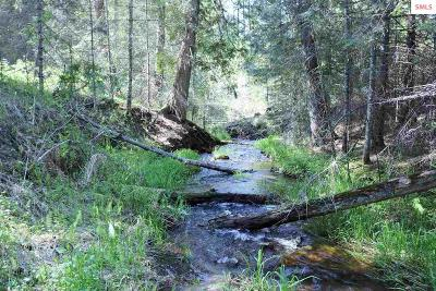 Priest Lake Residential Lots & Land For Sale: 706 Sanborn Creek Road