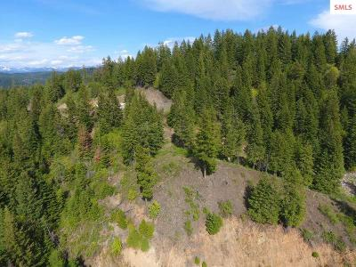 Sandpoint ID Residential Lots & Land For Sale: $199,500