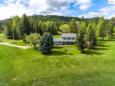Priest River Single Family Home For Sale: 100 Moose Meadow Dr