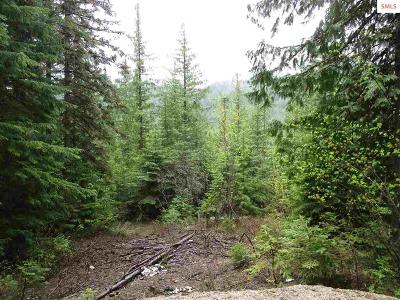 Sandpoint ID Residential Lots & Land For Sale: $49,900