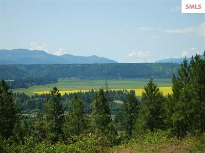 Bonners Ferry Residential Lots & Land For Sale: Nna Choke Cherry Ln.