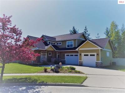 Sandpoint Single Family Home For Sale: 3702 Grandview Dr.
