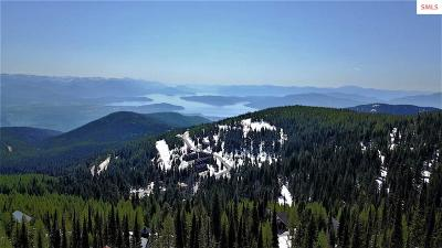 Mountainside, Schweitzer Residential Lots & Land For Sale: Lot 3 Tall Timber