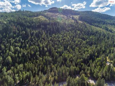 Sandpoint Residential Lots & Land For Sale: Nna Upper Pack River Road