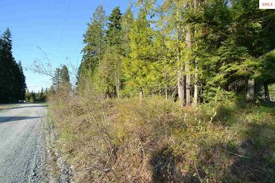 Priest River Residential Lots & Land Contingent W/Bump Clause: Pine St