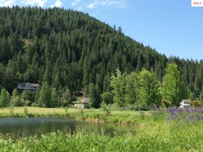 Sandpoint Residential Lots & Land For Sale: Nna Jim Brown Way