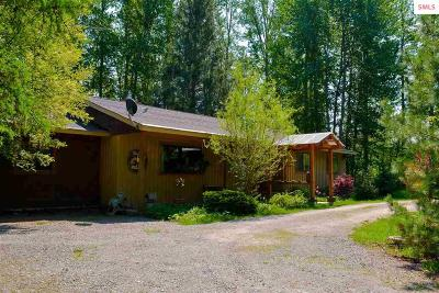 Sandpoint Single Family Home For Sale: 1813 Selkirk Road