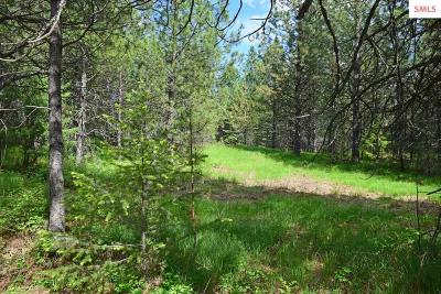 Bonners Ferry Residential Lots & Land For Sale: Lot 20 Pinnacle Circle