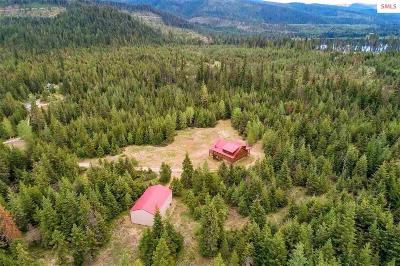 Priest Lake Single Family Home For Sale: 667 Private Drive