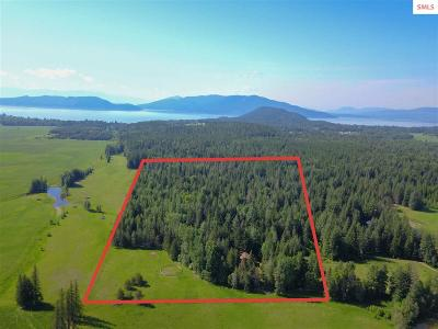 Sandpoint Single Family Home For Sale: 351 S Jacobson