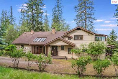 Sandpoint Single Family Home For Sale: 460 Sunnyside Ridge Rd