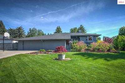 Coeur D'alene Single Family Home For Sale: 2214 E Hayden View Dr