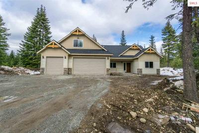 Rathdrum Single Family Home For Sale: L4b6 N Massif Rd