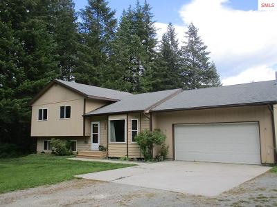Sandpoint Single Family Home For Sale: 245 Park Lane