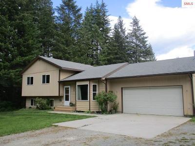 Bonner County, Boundary County, Kootenai County Single Family Home For Sale: 245 Park Lane