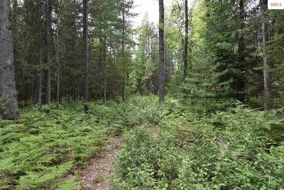 Sandpoint Residential Lots & Land For Sale: 1082 Upper Pack River Rd