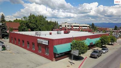 Commercial For Sale: 409 N 4th Avenue