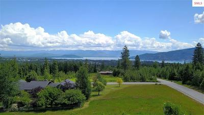Sandpoint Residential Lots & Land For Sale: Lot 23 Ravenwood Dr.