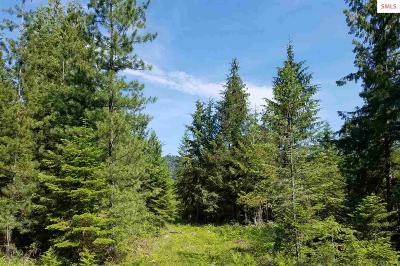 Clark Fork Residential Lots & Land For Sale: Nna Lowery Lane