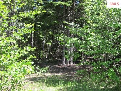 Sandpoint Residential Lots & Land For Sale: Nna Rapid Lightning