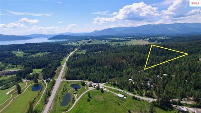 Sandpoint Residential Lots & Land For Sale: Nna Olympic Drive