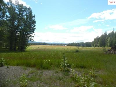Priest River Residential Lots & Land For Sale: Lot 9c Curtis Creek Rd