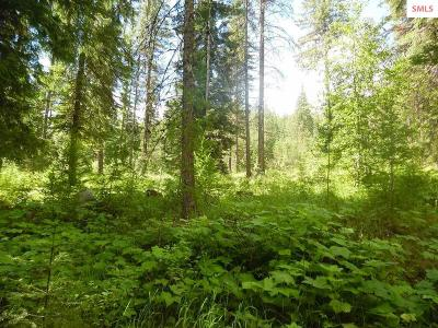 Priest River Residential Lots & Land For Sale: Lot 9b Curtis Creek Rd