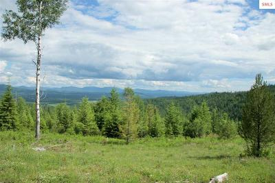 Priest River Residential Lots & Land For Sale: 1720 N Whittum Rd