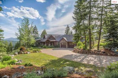 Sandpoint Single Family Home For Sale: 342 Forest Highland Dr