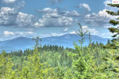 Sandpoint Residential Lots & Land For Sale: Nna Hidden Valley