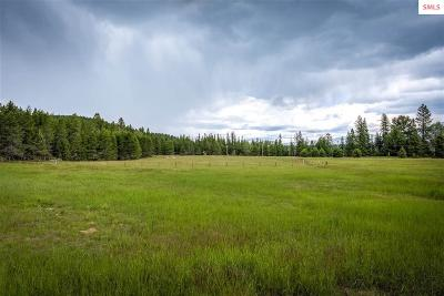 Priest River Single Family Home For Sale: 4980 Gleason McAbee Rd